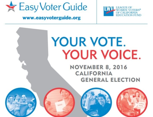 Feeling overwhelmed by a bloated ballot? Turn to the Easy Voter Guide